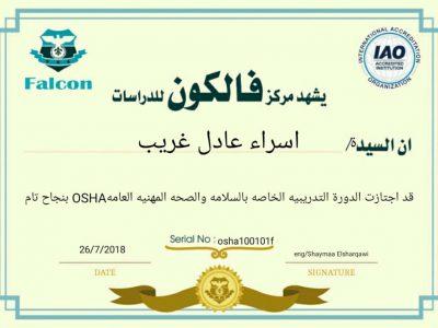 أ/إسراء عادل (السلامة الصحة المهنية)